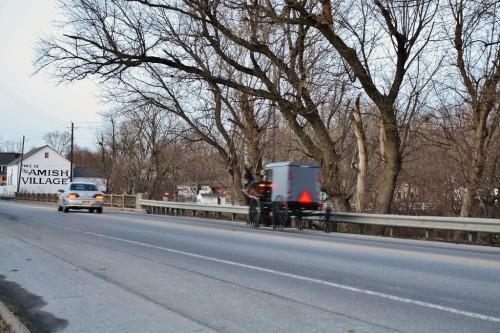 Old Order Amish Buggy Near Strasburg, PA