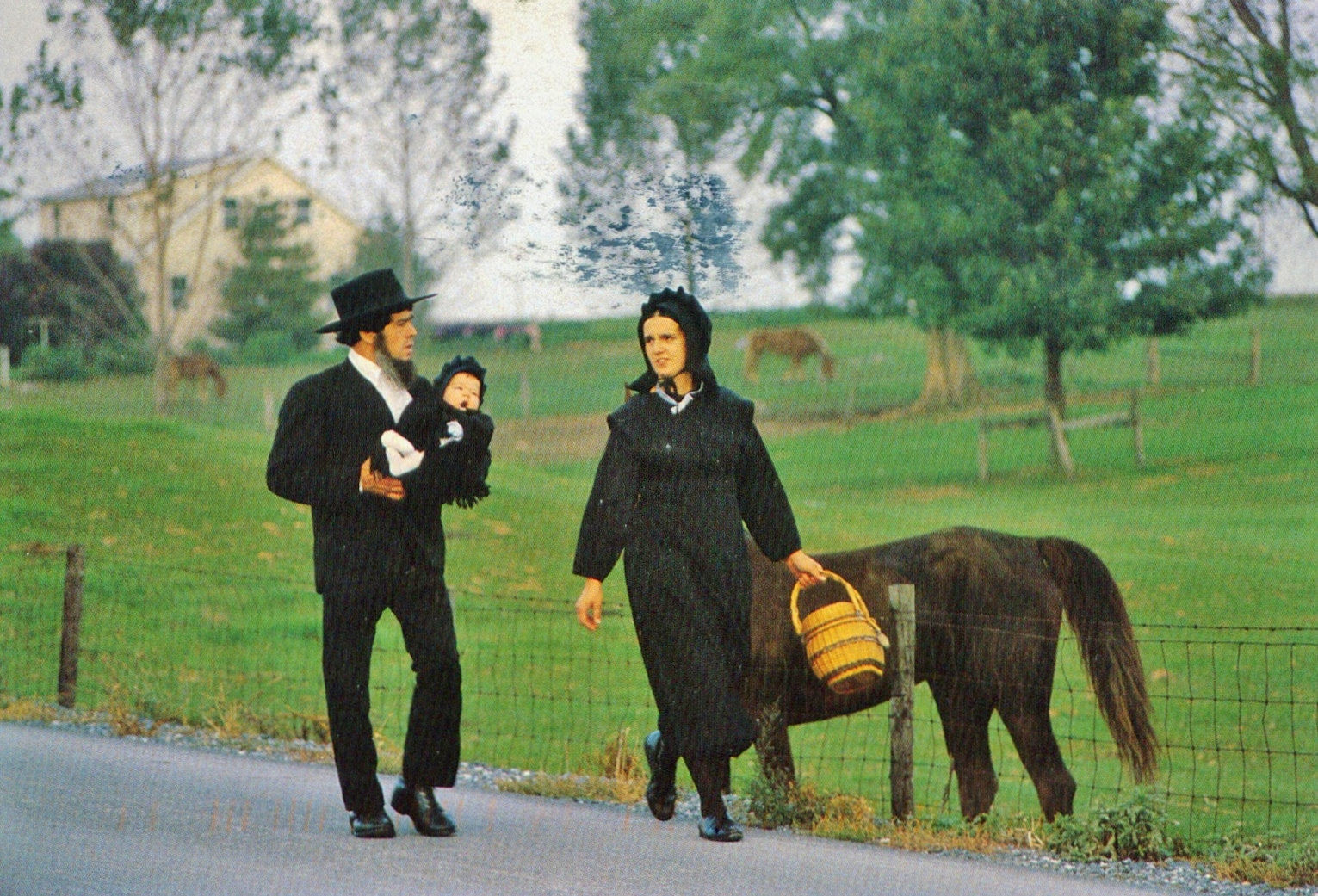 Amish Business Directory Autos Post