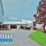 Pennsylvania Amish Vintage Postcard