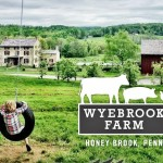 Image by Wyebrook Farm
