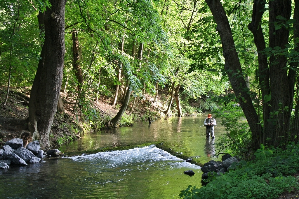 Fly fishing in boiling springs pa visit pa dutch country for Fly fishing pa