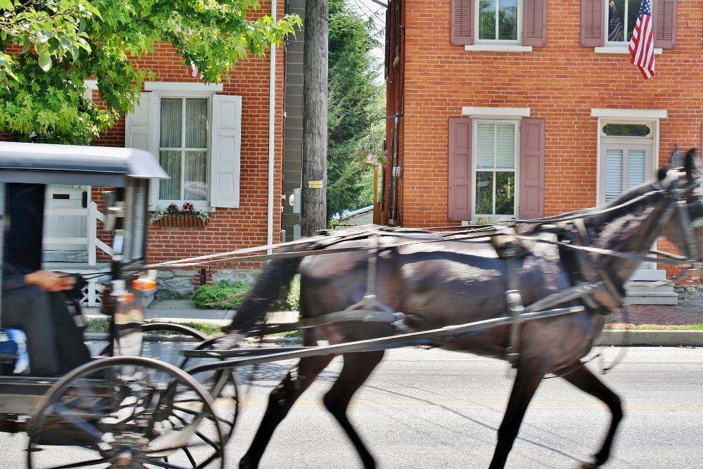 Amish Buggy - Strasburg, PA