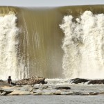 Remove the Susquehanna's Dams and 'Let the River Run Wild'